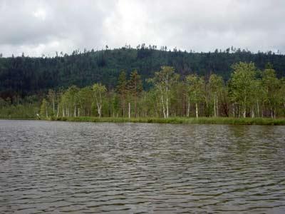 Озеро Плахино